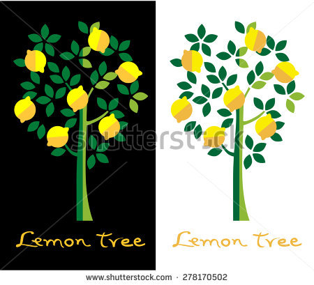 Lemon Tree Stock Photos, Royalty.