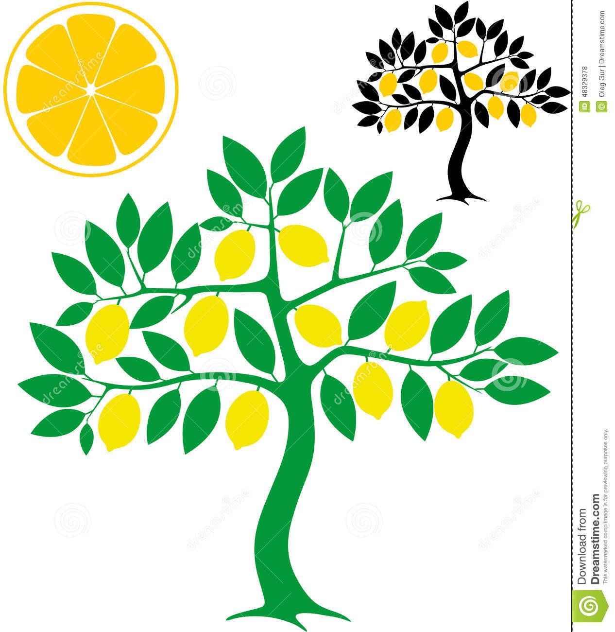 Lemon Tree Stock Vector.