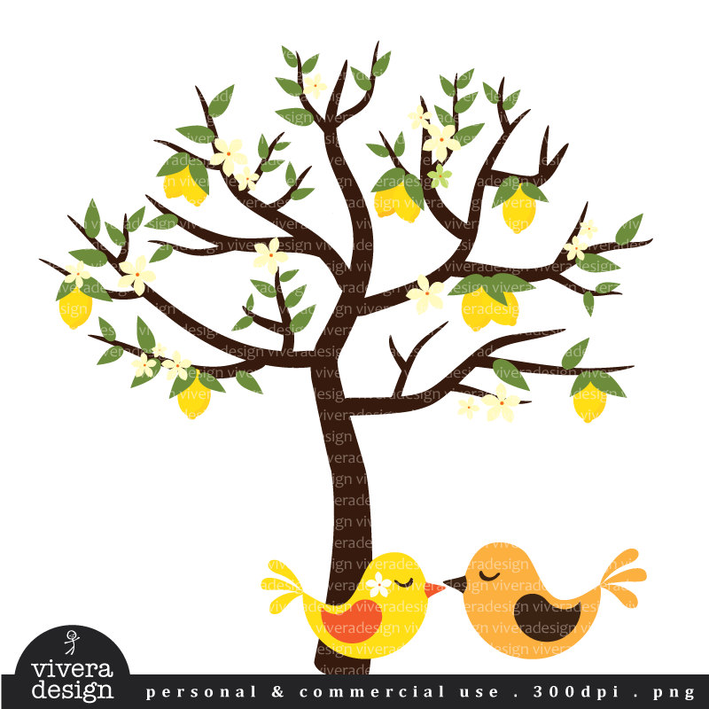 Lemon tree branch clipart.