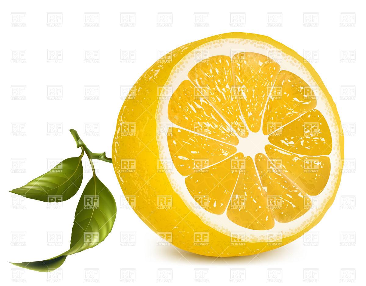 Lemon Slice Clipart.