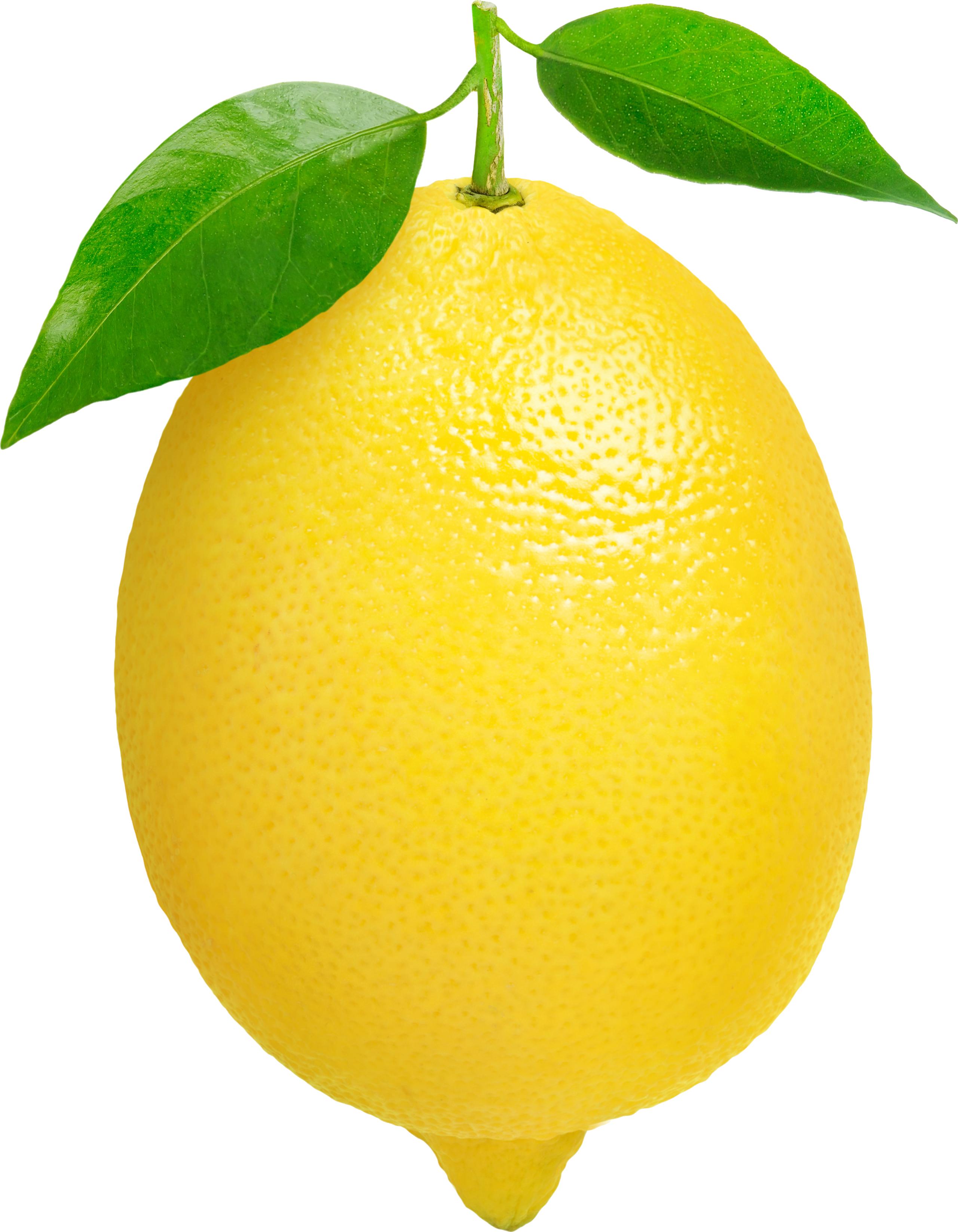 Yellow lemon clipart.