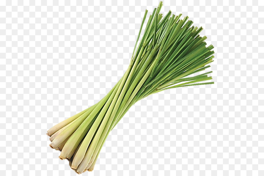 Lemon Grass png download.