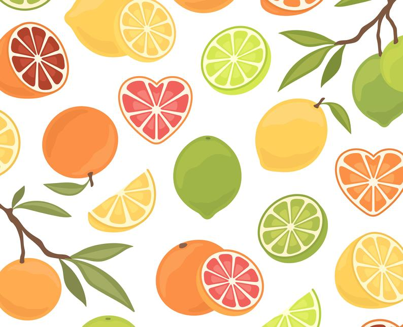 Lemon Lime Clipart, Orange Grapefruit Clip Art, Citrus Clipart, Summer  Spring Clip Art, Fruit Clipart, Commercial Use.
