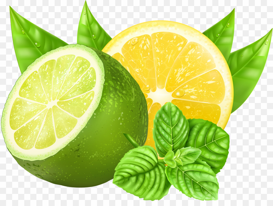 Lemon Lime Vector PNG Lime Lemon Clipart download.