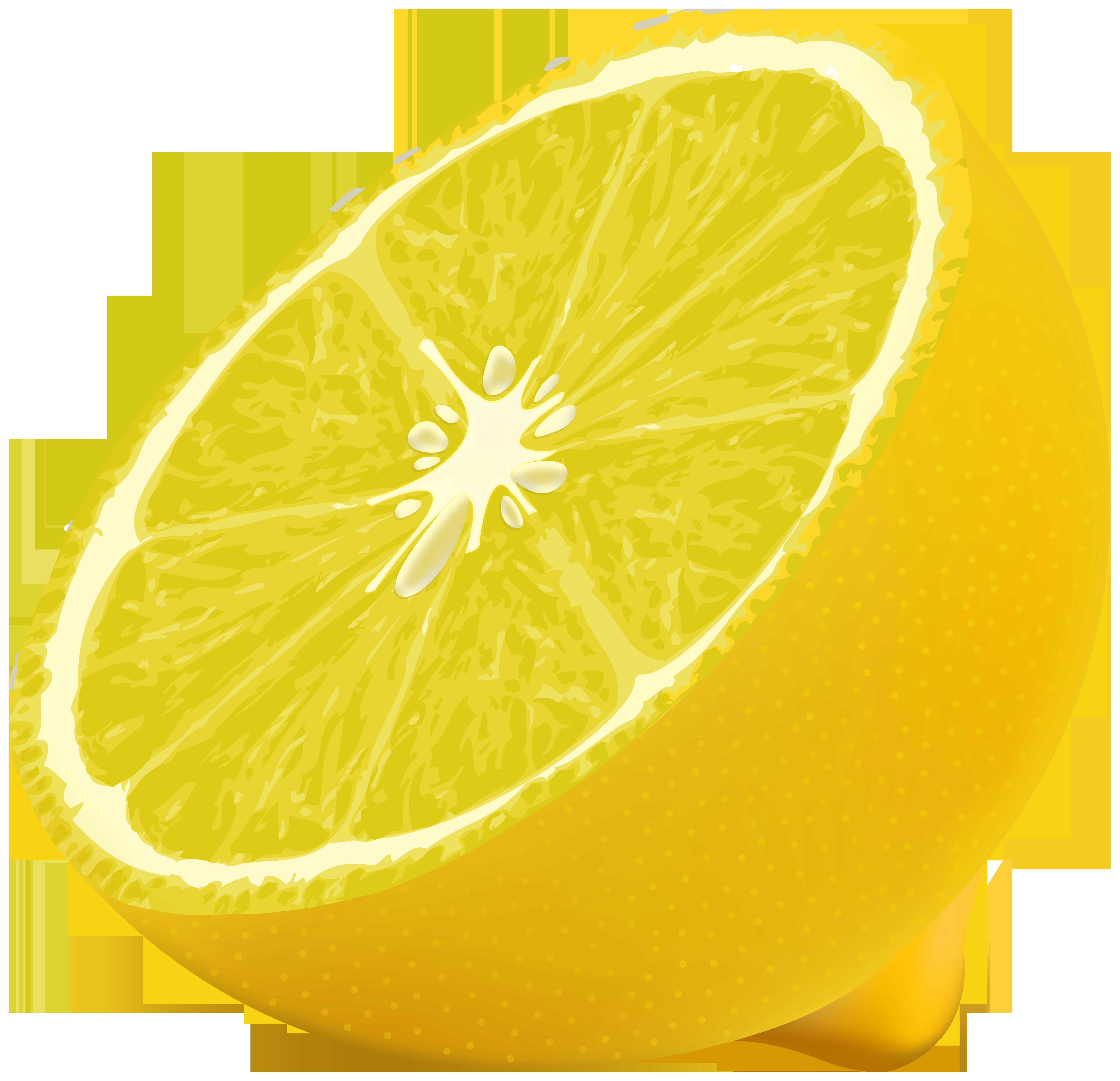 Half Lemon PNG Clipart Image.
