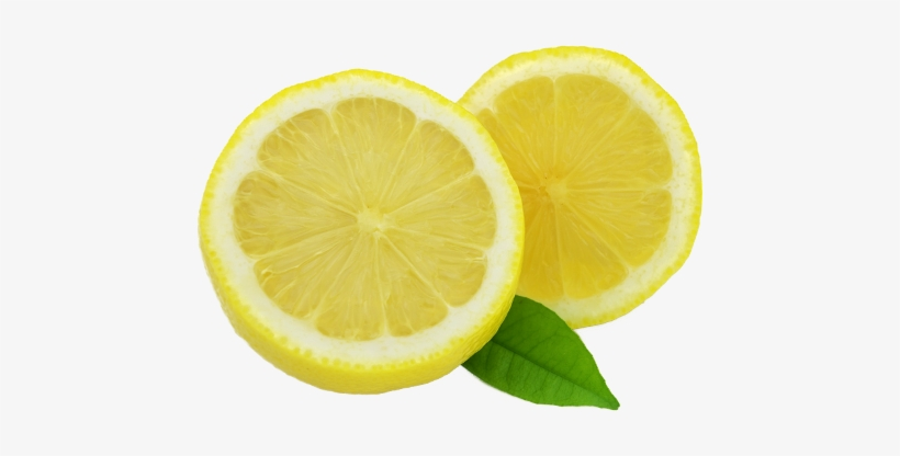 Lemon Slice Png (+).
