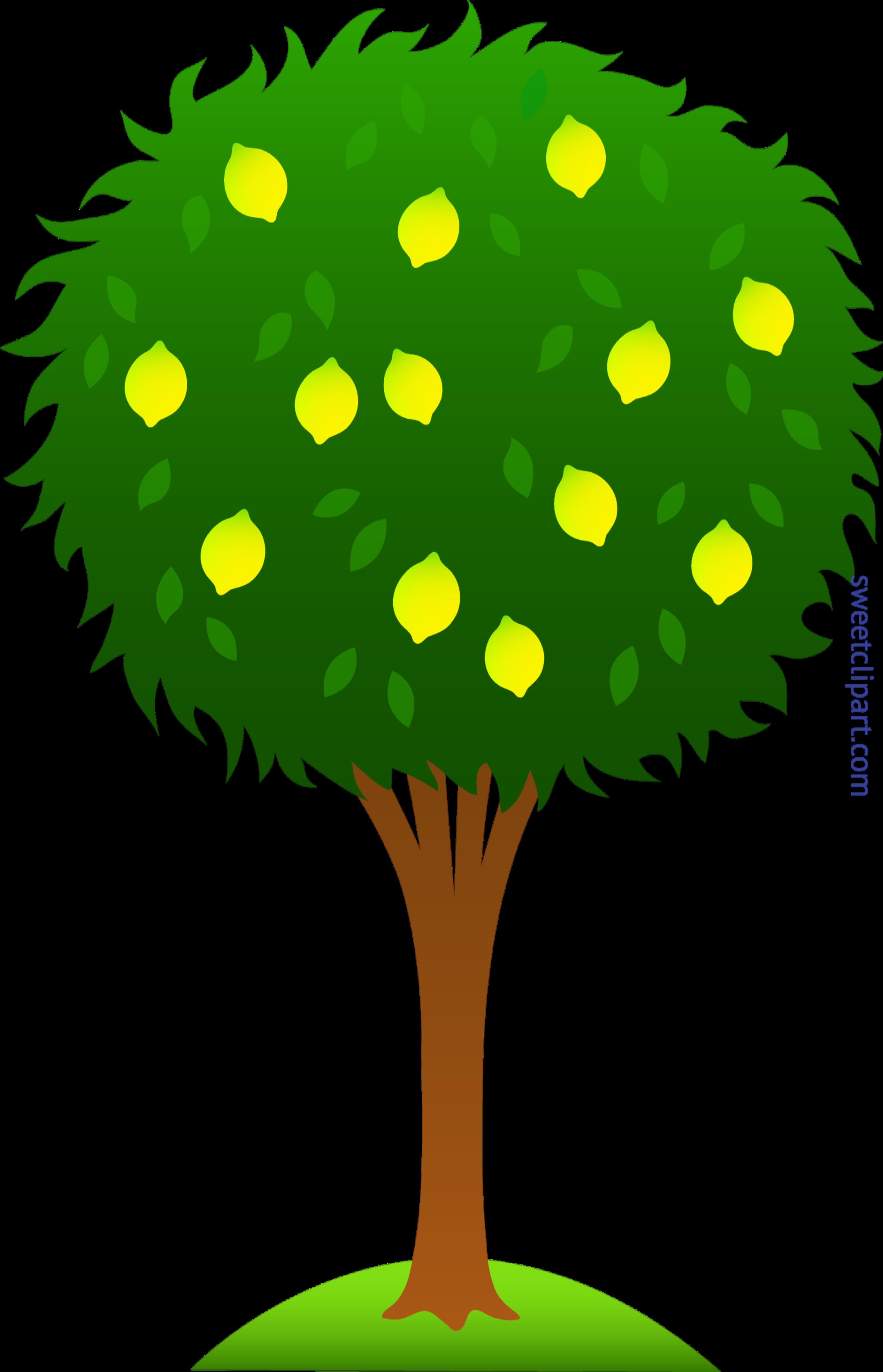 Lemon Tree Clip Art.