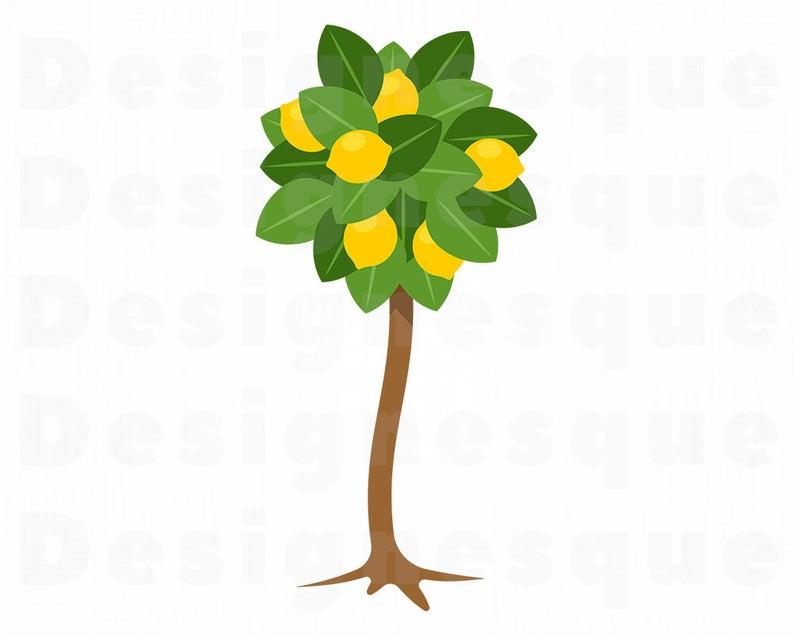 Lemon Tree SVG, Lemon Tree Clipart, Lemon Tree Files for Cricut, Lemon Tree  Cut Files For Silhouette, Lemon Tree Dxf, Png, Eps, Vector.