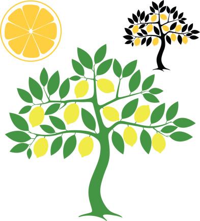 Lemon Tree Clip Art, Vector Images & Illustrations.