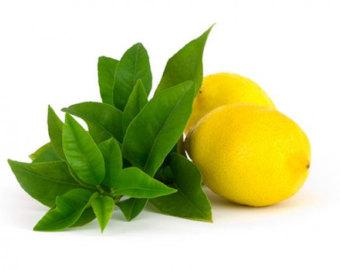 Items similar to Lemon Verbena Soap, MELLOW YELLOW, Homemade.