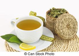 Stock Photo of Cup of lemon verbena tea.