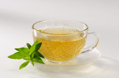 Cup Of Lemon Verbena Tea Stock Photo.