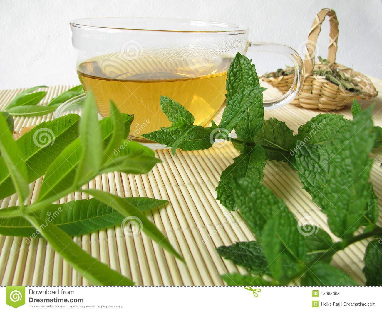 Herbal Tea With Lemon Verbena And Moroccan Mint Royalty Free Stock.