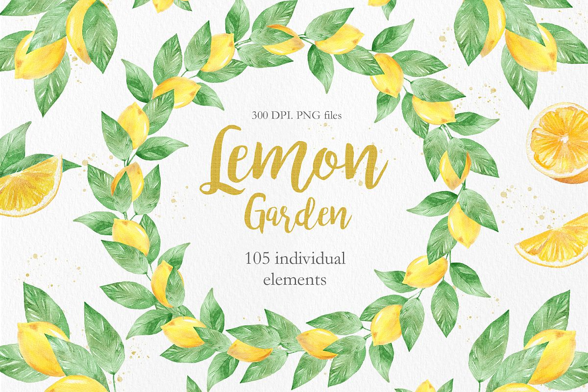 Watercolor Lemon Clipart Collection.