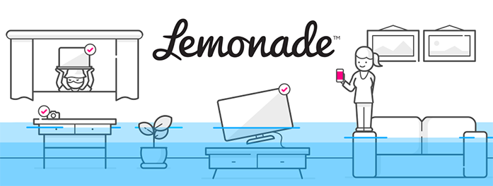What is Lemonade Insurance and Its Benefits.
