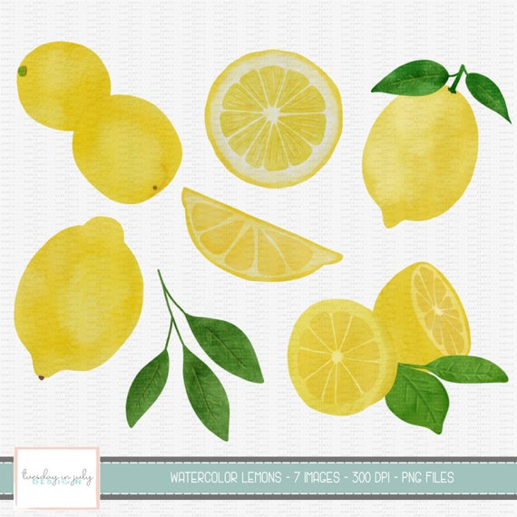 Watercolor Lemon Clipart Set, Watercolor, Lemons, Clip Art, Commercial Use,  Instant Download, Digital Clipart, Digital Images.