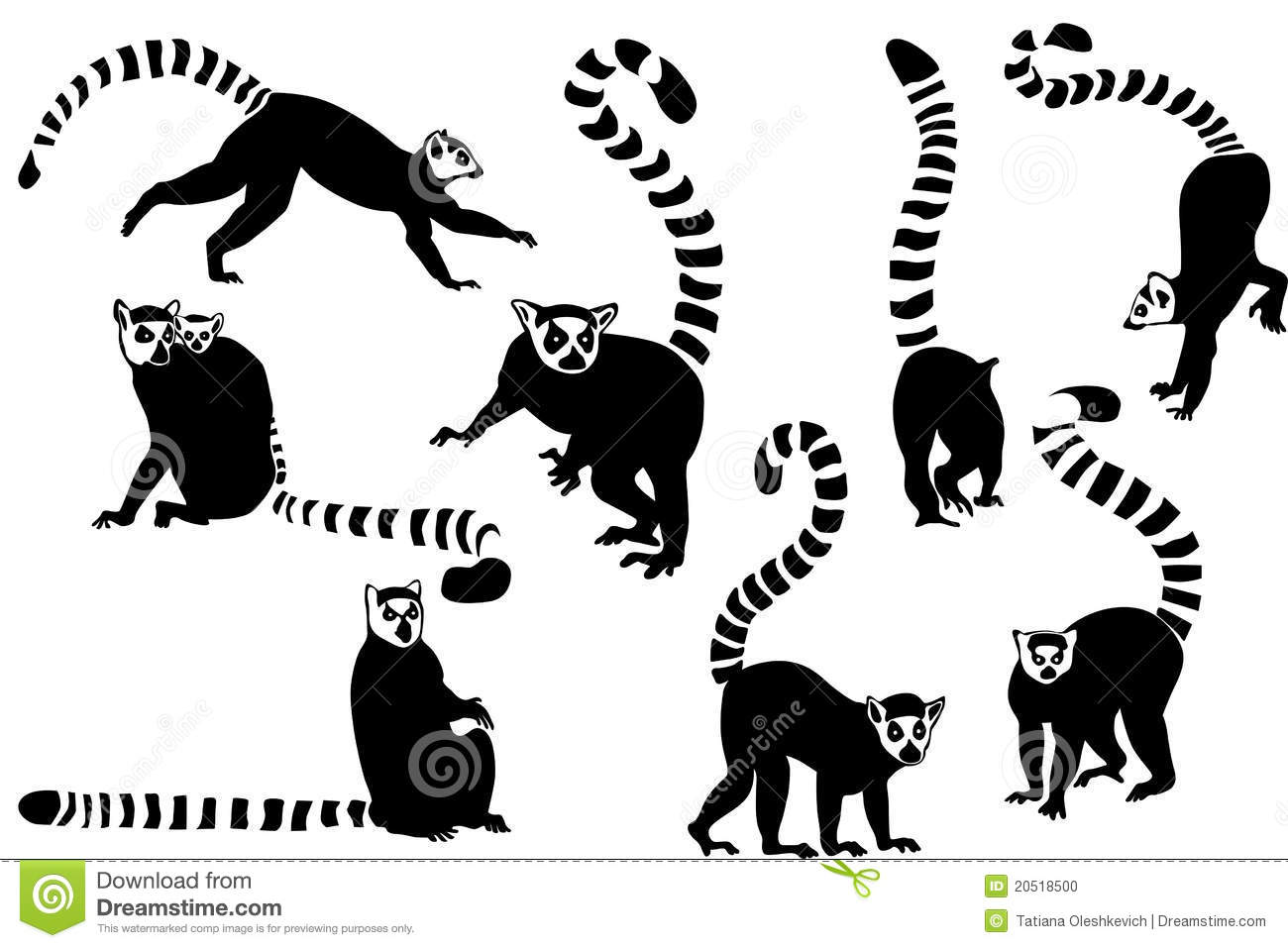 Lemur Stock Illustrations.
