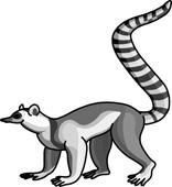 Lemur clip art.