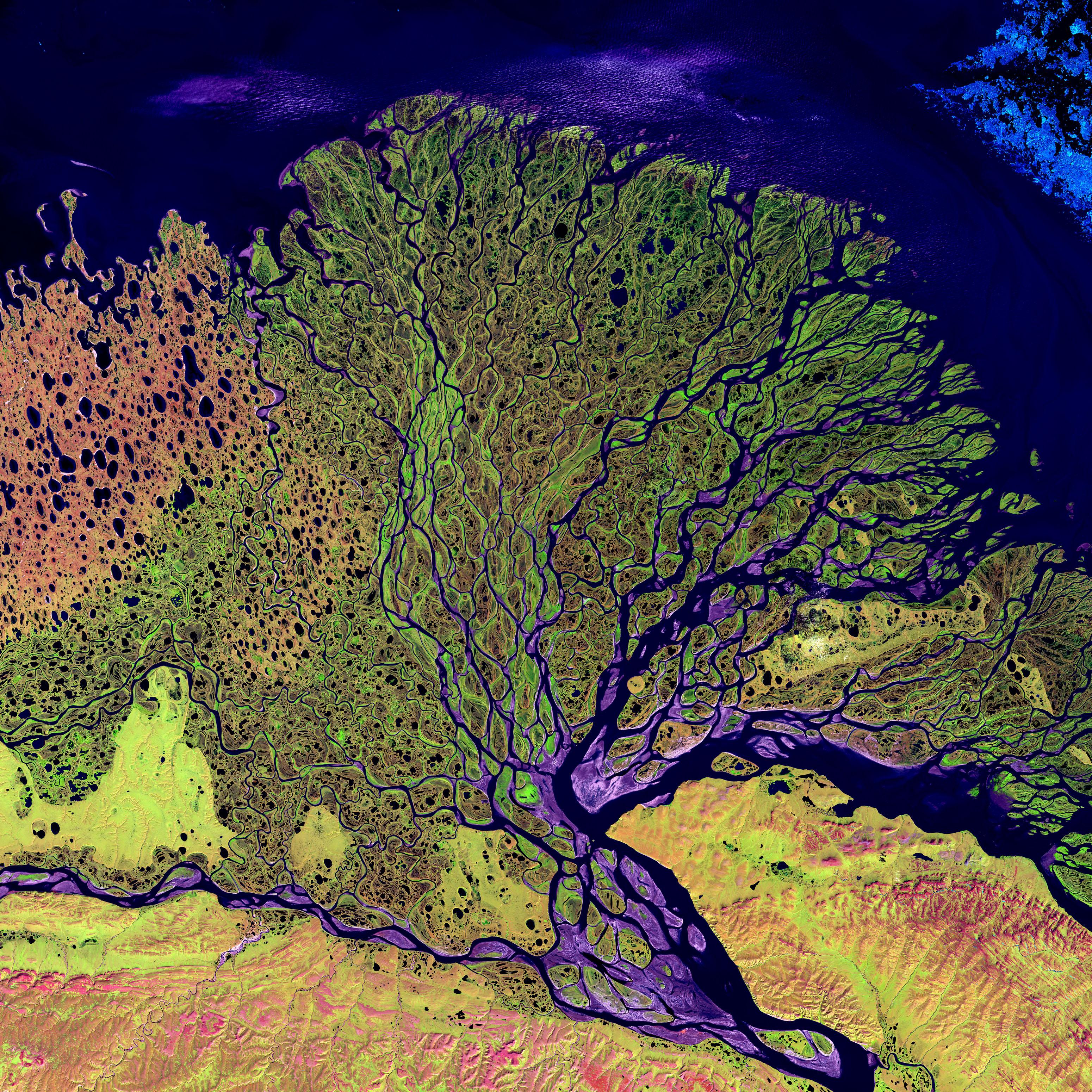 "Caltech grows miniature ""river deltas"" in a lab."
