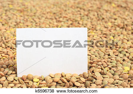 Pictures of Raw dried lentils (lat. Lens culinaris) with a blank.