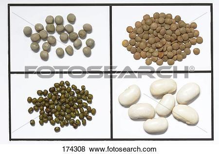 Pictures of Assortment of legumes: Peas (Pisum sativum), lentils.