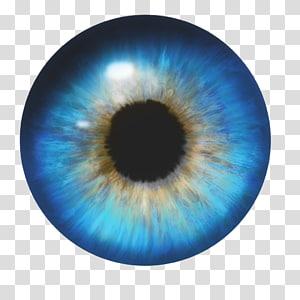 Green eye iris, Eye color Lens flare, Eye transparent.