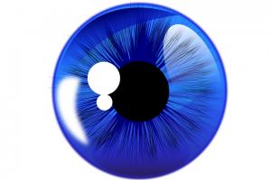 Mata vector png 4 » PNG Image.
