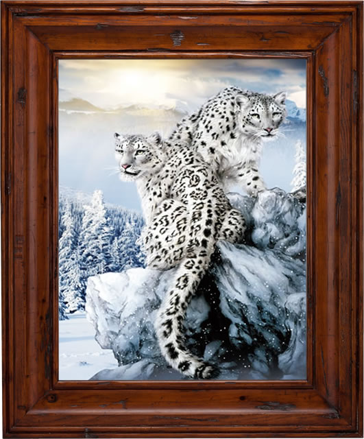 Aliexpress.com : Buy Snow Leopard Lenticular 3D Picture Animal.