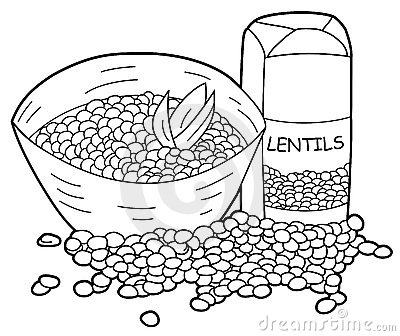 Lentils Stock Illustrations.