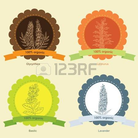 880 Computer Herb Stock Vector Illustration And Royalty Free.