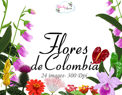 1000+ ideas about Flores De Colombia on Pinterest.