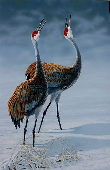 pair of sandhill cranes courting in the snow.