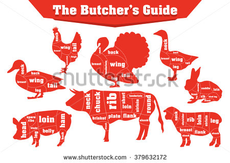 Butcher Meat Cuts Infographic Set Vector Stock Vector 379632172.