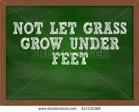 Let It Grow Stock fotos, billeder til fri afbenyttelse og vektorer.