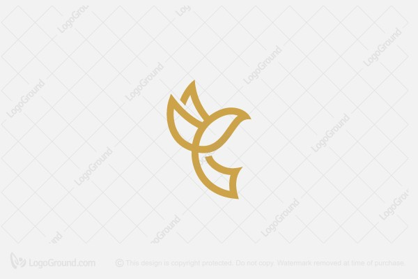 Exclusive Logo 161194, Bird Letter C Logo.