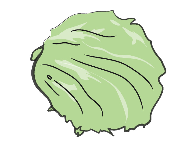 Clip Art Leaf Lettuce Clipart.