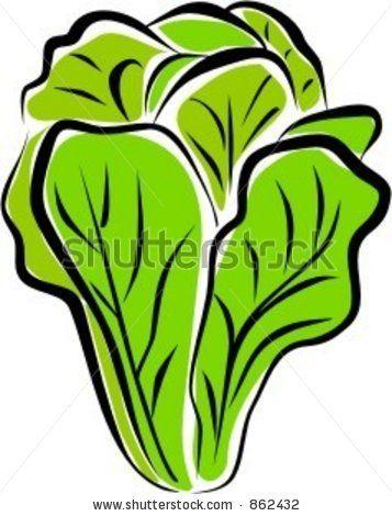 lettuce clipart free.