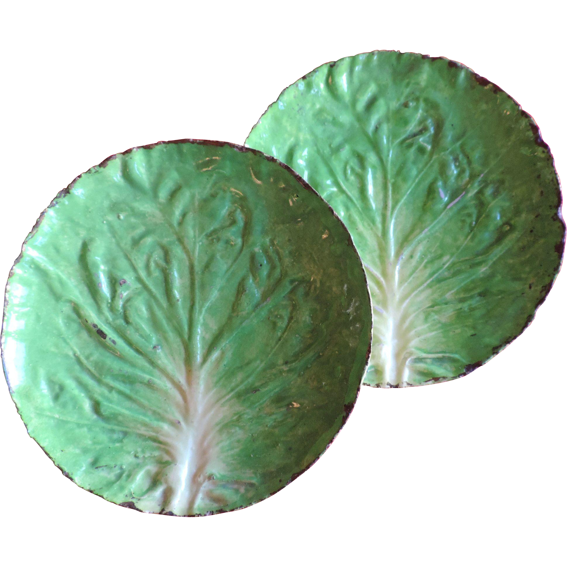 Lettuce leaf plates clipart images gallery for free download.