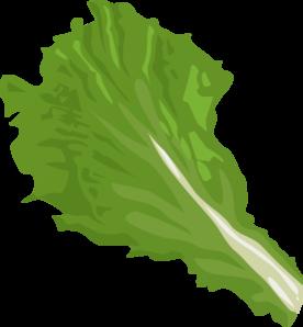 Lettuce Leaf Clip Art.
