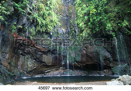 Picture of Waterfall in forest, Levada, Rabacal, Madeira, Portugal.