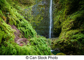 Picture of waterfall in the end of Levada Caldeirao Verde, Madeira.