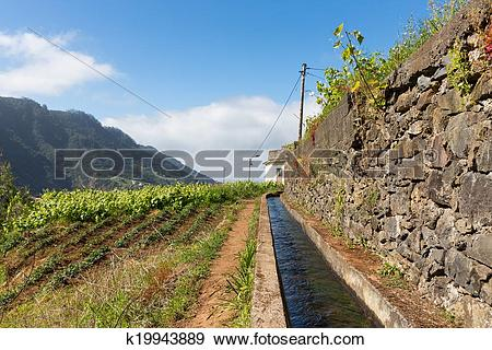 Stock Photograph of Levada, irrigation canal with hiking path at.