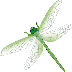 libelle cliparts, clipart.