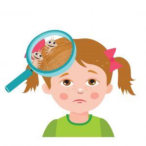 Lice Life Cycle.