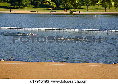 Stock Photo of England, London, Hyde Park. Swimming in the.