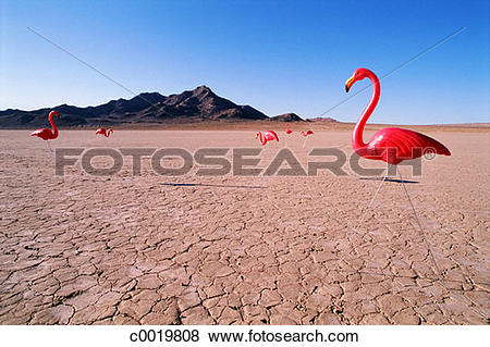 Pictures of concept, cracked, desert, mountain, still.