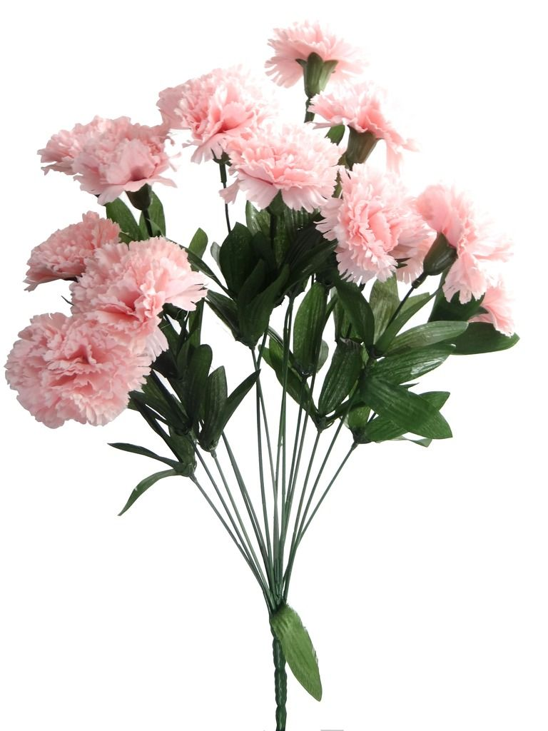 Pink Carnation Flower Tattoo Designs.