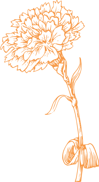 Orange Carnation Clip Art at Clker.com.