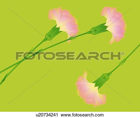 Clipart of Image of Three Pink.