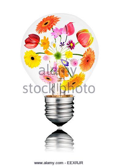 Light Edges Stock Photos & Light Edges Stock Images.